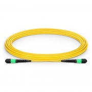 5m (16ft) MTP®-12 (Female) to MTP®-12 (Female) OS2 Single Mode Elite Trunk Cable, 12 Fibers, Type A, Plenum (OFNP), Yellow