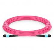 10m (33ft) MTP Female 12 Fibers Type B Plenum (OFNP) OM4 (OM3) 50/125 Multimode Elite Trunk Cable, Magenta