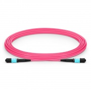 5m (16ft) Senko MPO Female 12 Fibers Type A LSZH OM4 (OM3) 50/125 Multimode Elite Trunk Cable, Magenta