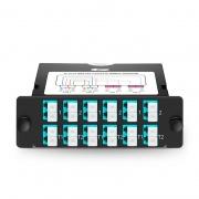 Cassette TAP BIDI FHD avec 24 Fibres OM4 Multimode, 12x LC Duplex, Rapport de Division 50/50 (Live/TAP), 40G