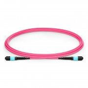 2m (7ft) MTP Female 12 Fibers Type A Plenum (OFNP) OM4 (OM3) 50/125 Multimode Elite Trunk Cable, Magenta