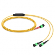 Customized MTP® 24 Fibers OS2 Single Mode Conversion Harness Cable
