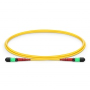24 Fibres MTP to MTP Female Plenum (OFNP) OS2 Single Mode Elite Fibre Trunk Cable, Type A, 1m