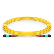 5m (16ft) MTP® Female 24 Fibers Type A (TIA-568) Plenum (OFNP) OS2 9/125 Single Mode Elite Trunk Cable, CPAK-10x10G-LR, Yellow