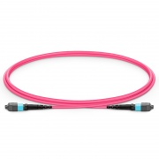 1m (3ft) MTP®-16 APC (Female) to MTP®-16 APC (Female) OM4 Multimode Elite Trunk Cable, 16 Fibers, Plenum (OFNP), Magenta, for 400G Network Connection