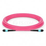 Cable troncal de fibra óptica OM4 (OM3) 50/125 multimodo MTP macho 12 fibras tipo B, élite, Plenum (OFNP) 10m - magenta