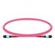 1m (3ft) MTP Female 24 Fibers Type A (TIA-568) Plenum (OFNP) OM4 (OM3) 50/125 Multimode Elite Trunk Cable, 100GBASE-SR10 CXP/CFP/CPAK, Magenta