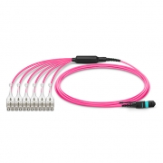 2m (7ft) MTP Female to 6 LC UPC Duplex 12 Fibers OM4 (OM3) 50/125 Multimode HD Breakout Cable, Type A, Elite, LSZH, Magenta