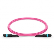 3m (10ft) MTP Female to MTP Female 12 Fibers OM4 (OM3) 50/125 Multimode HD Trunk Cable, Type A, Elite, LSZH, Magenta