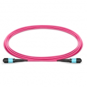 3m (10ft) MTP Female to Female 12 Fibers OM4 (OM3) 50/125 Multimode Trunk Cable, Type B, Elite, Plenum (OFNP), Magenta