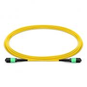 Cable Troncal de Fibra Óptica OS2 9/125 Monomodo MPO hembra a MPO hembra 12 Fibras Tipo B Élite LSZH 1m - Amarillo