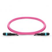 12-144 Fibers OM4 Multimode 12 Strands HD BIF MTP Trunk Cables, Elite, LSZH Bunch 3.0mm