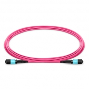 10m (33ft) MPO Female to Female 12 Fibers OM4 (OM3) 50/125 Multimode Trunk Cable, Type A, Elite, LSZH, Magenta