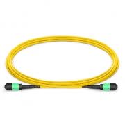 3m (10ft) MTP (мама)-MTP (мама) Патч-корд, 12 Волокон, 9/125 SM OS2, Тип A, Elite, Plenum (OFNP), Зеленовато-Жёлтый
