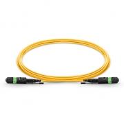 1m (3ft) MTP (мама)-MTP (мама) Патч-корд, 12 Волокон, 9/125 SM OS2 HD, Тип B, Elite, LSZH, Зеленовато-Жёлтый