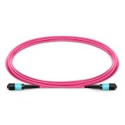 Cable Troncal de Fibra Óptica OM4 (OM3) 50/125 Multimodo MPO hembra a MPO hembra 12 Fibras Tipo B Élite LSZH 1m - Magenta