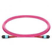Cable Troncal de Fibra Óptica OM4 50/125 Multimodo MTP-MTP 24 Fibras Polaridad C, élite, Plenum (OFNP) - Magenta