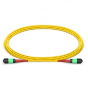 1m (3ft) MTP Female to MTP Female 24 Fibers OS2 9/125 Single Mode Trunk Cable, CPAK-10x10G-LR, Type A (TIA-568), Elite, LSZH, Yellow