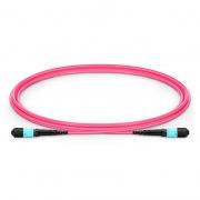 1.5m (5ft) MTP Female 12 Fibers Type B Plenum (OFNP) OM4 (OM3) 50/125 Multimode Elite Trunk Cable, Magenta