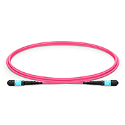 MTP® Trunkkabel, 1m (3ft) MTP® Female 12 Fasern, Polarität B Plenum (OFNP) OM4 50/125 Multimode, Elite, Magenta