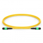 1m (3ft) MPO Female 12 Fibers Type B LSZH OS2 9/125 Single Mode Elite Trunk Cable, Yellow