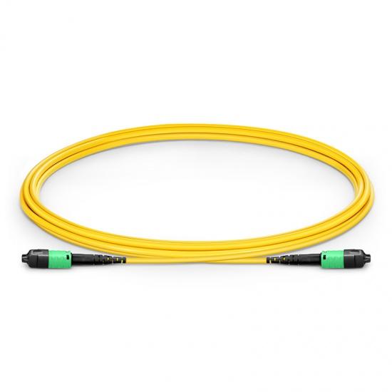 2m 12芯 US Conec MTP® PRO (公头)OS2 9/125单模主干光纤跳线, 极性B Plenum (OFNP)
