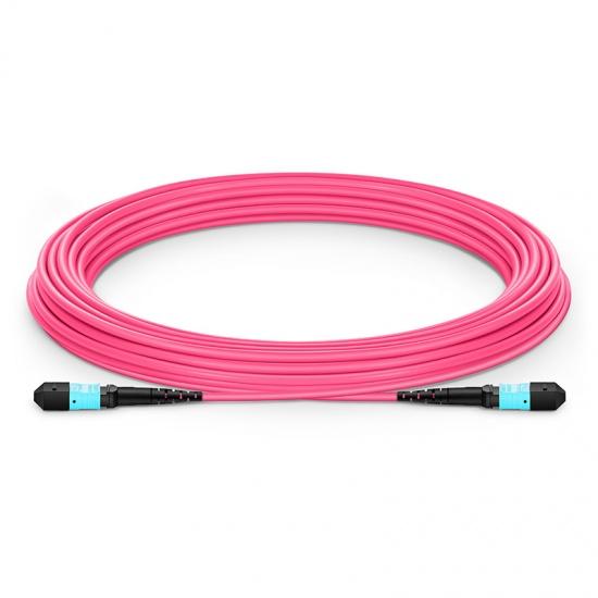 50m 12芯 MTP®(母)万兆多模OM4主干光纤跳线,极性B,低插损,Plenum (OFNP阻燃)