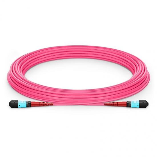 15M 24芯 MTP®(母)万兆多模OM4主干光纤跳线,100GBASE-SR10 CXP/CFP/CPAK, 极性 A (TIA-568),低插损,Plenum (OFNP阻燃)