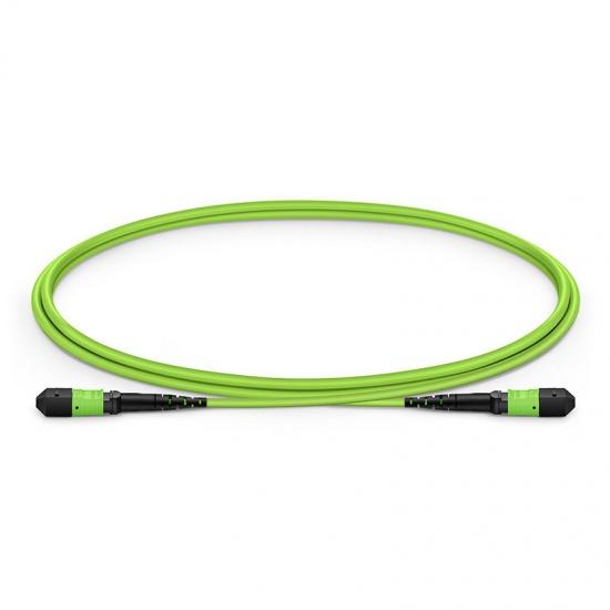 1m 12芯MTP® (母)多模OM5主干光纤跳线,极性B,低插损,Plenum (OFNP阻燃) ,柠檬绿