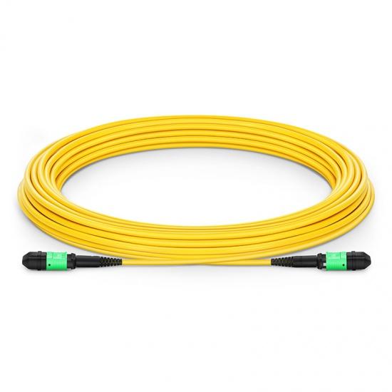 8-144 芯单模MPO(12芯)主干光纤跳线