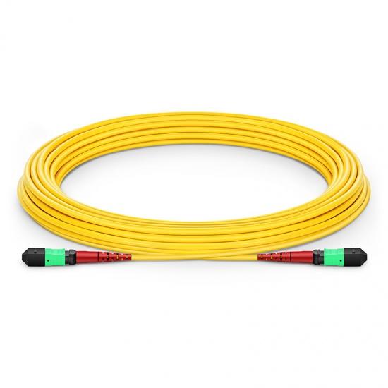 24-144 芯单模MTP(24芯)主干光纤跳线