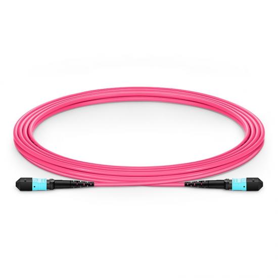3M 12芯 万兆多模(OM4) 50/125 MTP(母)主干光纤跳线 LSZH外护套-品红色,极性B ,用于40GBASE-SR4网络布线