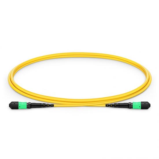 1M 12芯 MTP®(母)单模OS2主干光纤跳线,极性B ,LSZH