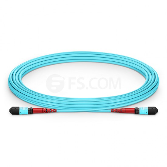 5M 24芯 MTP(母)万兆多模OM3主干光纤跳线,100GBASE-SR10 CXP/CFP/CPAK, 极性 A (TIA-568),低插损,LSZH