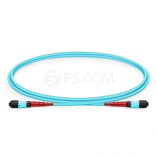 1M 24芯 MTP(母)万兆多模OM3主干光纤跳线,100GBASE-SR10 CXP/CFP/CPAK, 极性 A (TIA-568),低插损,LSZH
