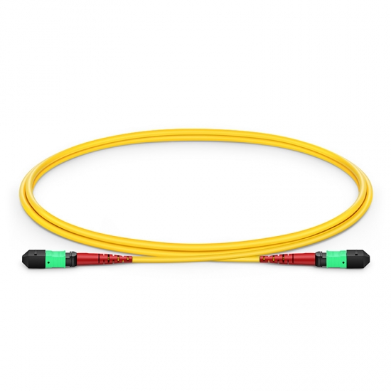 1m (3ft) MTP Female 24 Fibers Type A (TIA-568) LSZH OS2 9/125 Single Mode Elite Trunk Cable, CPAK-10x10G-LR, Yellow