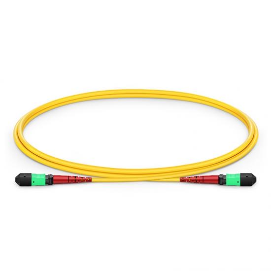 1M 24芯 MTP(母)单模OS2主干光纤跳线,CPAK-10x10G-LR , 极性 A (TIA-568),低插损,LSZH