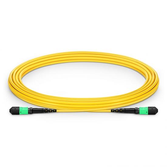 5M 12芯 MTP(母)单模OS2主干光纤跳线,极性B ,低插损,LSZH