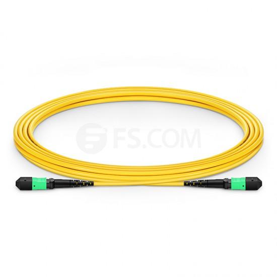 3M 12芯 MTP(公)单模OS2主干光纤跳线,极性B ,低插损,LSZH