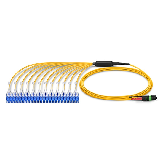 20/24 芯 MTP®(24芯) 单模(OS2) 高密度弯曲不敏感分支光纤跳线, 低插损,LSZH