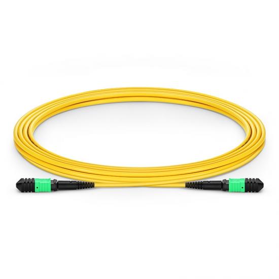 3M 12芯 MPO(母)单模OS2主干光纤跳线,极性B ,低插损,LSZH