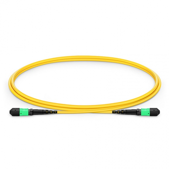 1m (3ft) MTP Female 12 Fibers Type B Plenum (OFNP) OS2 9/125 Single Mode Elite Trunk Cable, Yellow