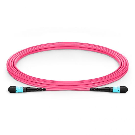 3m 12芯 MTP®(母)万兆多模OM4主干光纤跳线,极性B,低插损,Plenum (OFNP阻燃)