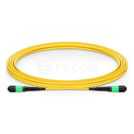 3m 12芯MTP(母)单模OS2主干光纤跳线 ,极性B,低插损,Plenum (OFNP阻燃)