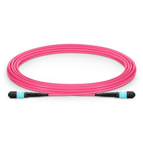 5m 12芯 MTP(母)万兆多模OM4主干光纤跳线 ,极性B,低插损,Plenum (OFNP阻燃)