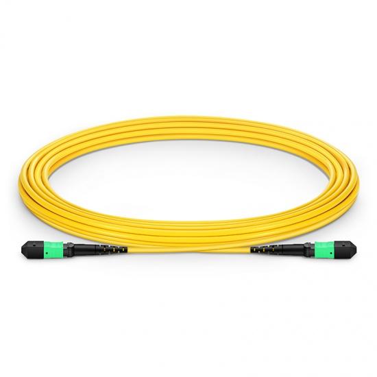 5m 12芯 MTP(母)单模OS2主干光纤跳线,极性A,低插损,Plenum (OFNP阻燃)