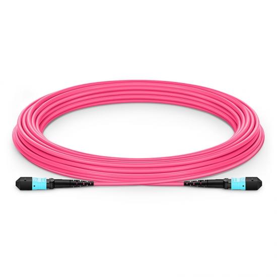10m (33ft) MTP Female 12 Fibers Type A Plenum (OFNP) OM4 (OM3) 50/125 Multimode Elite Trunk Cable, Magenta