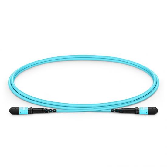 12 Fibres MTP to MTP Female Plenum (OFNP) OM3 Multimode Elite Fibre Trunk Cable, Type A, 1m
