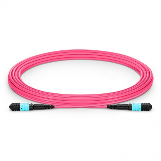 5m 12芯 MPO(母)万兆多模OM4主干光纤跳线,极性A,低插损,LSZH