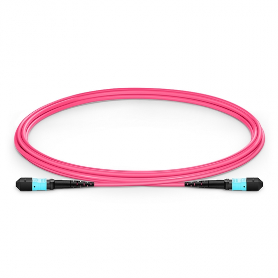 2m (7ft) MTP Female 12 Fibers Type A Plenum (OFNP) OM4 (OM3) 50/125 Multimode Elite Trunk Cable, Magenta